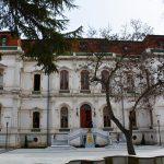 hababam muze 8